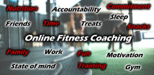 Online Fitness Coaching banner