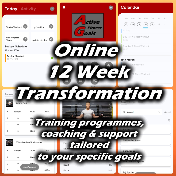 12 week online personal training banner