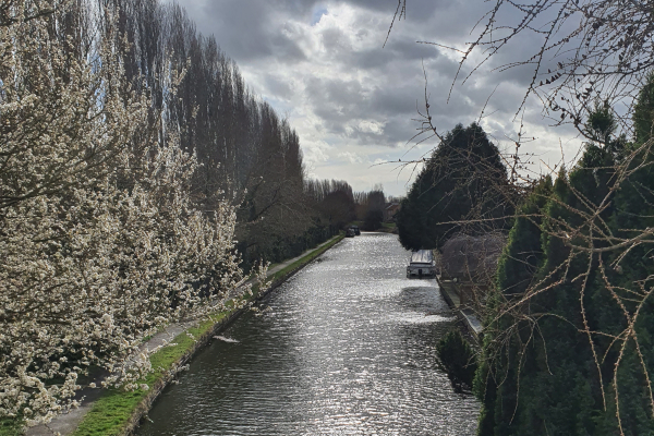 10,000 steps canal